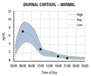 adrenal_curve_normal